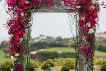 Andalucia Wedding