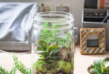 ideas | mason jars