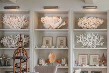 Shells / Cool ideas to display them.