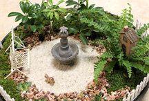 Dish garden