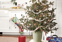 Kitchen Christmas Tree / by Angela Conklin