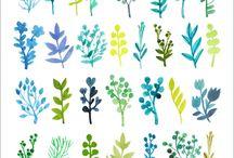 水彩画 植物