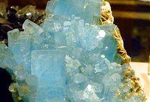 Stenen, mineralen, schelpen, fossielen en hout