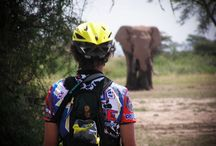 Radtouren - Radreisen - Bike Tours / Radtouren in Tansania - Kombinierte Safari Touren mit Radinhalten - Bike Tours in Tanzania - East African Bike Tour Expert and Outfitter