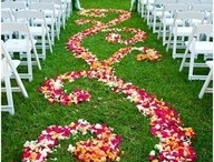 Let's Get Married Outside! / Whether it's in your backyard, in a meadow, in the woods, or anywhere outside, you can make your wedding perfect for you and your fiance.