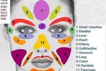 Partes de la cara relacionadas con el cuerpo