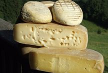 formaggi di montagna.