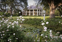 Houmas House Plantation & Garden / The Sugar Palace