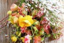 Spring Wedding Decor / Flowers, colors, linens, etc. / by Tiffany Whitehurst