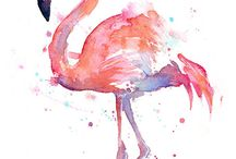 Flamingo // Pink Fluff & Long Legged / A collection of fluffy pink long legged loveliness