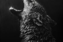 wolf love this animal