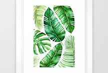 * Tropical leaves