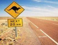 Décoration australienne