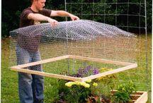 庭作りのアイデア