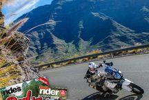 Subscribe! / by Rider Magazine