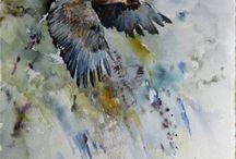 Müritz - Nationalpark / #Müritz #Nationalpark #wildlife