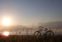 BELEEF   Europa op de fiets / Fietsen van streek naar streek over Europa's mooiste wegen. Je bent één met het landschap. Je ruikt de lavendel, hoort de vogels. Kijk daar, een prachtig plekje om te picknicken met z'n tweetjes of met het hele gezin.