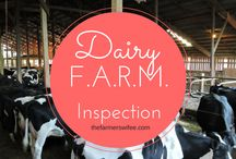 Animal Care / All of our dairy farms participate in the National Dairy FARM Program. (Farmers Assuring Responsible Management) We believe that healthy, safe, and comfortable cows produce the best milk.