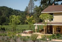Wine Country Houses / Vacation rentals in Napa Valley and Sonoma