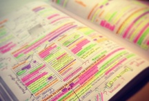 highlighting of notes