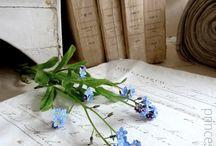 Поэзия в цветах / Поэзия живёт в цветах, средь строк, средь пыльных полок...