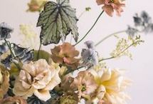 Florals and Plants / Beautiful florals and plants for inspiration