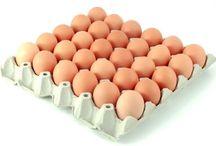 nahrady vajec