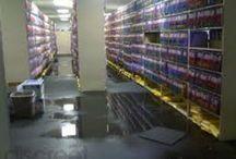 Water Damage Repair / by Ashley