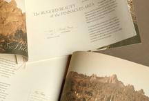 Magazine/Brochure Layout