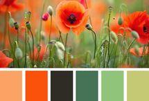 Farbimpressionen