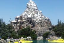 Trip to Disney Land, Universal studio & Las Vegas / Trip to disney land and universal studio in LA and Las Vegas