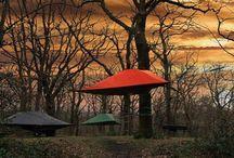 TENTSILE / TENTSILE은 세 그루의 나무에 스트랩을 연결해 본체를 공중에 띄우는 Tree Tent입니다. 있는 그대로의 자연 바로 그 위에 당신만의 보금자리를 올려보세요.  딱딱하고 차가운 돌, 축축한 땅을 피할 이유는 사라졌습니다. 캠핑의 불청객으로부터 벗어나 편안하고 환상적인 아웃도어를 경험할 수 있는 새로운 방법을 제시합니다. 나무 숲 사이에서 차원이 다른 캠핑을 느껴보세요.