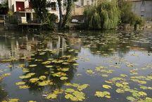 Vivonne / Vivonne, village étape situé sur la RN 10, Poitou-Charentes, Vienne. C'est au fil de l'eau que l'on découvre le mieux la commune de Vivonne qui, forte de quatre rivières, constitue une étape rafraîchissante sur votre parcours.