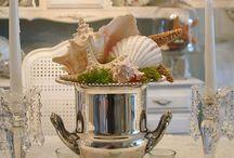 Shells (j'adore)