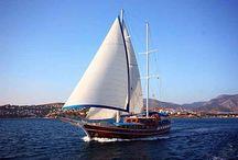 Blue Cruise / Blue Cruise  Standard Plus Gulet