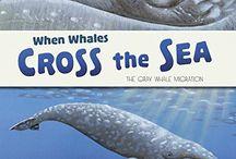 Nonfiction: Whales