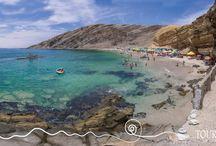 Tours en Paracas / Paracas, es una fantástica opcion de turismo al sur del Perú. http://www.toursenica.com/tours-paracas.php