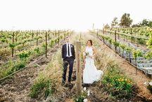 WEDDING || WINERIES & VINEYARDS