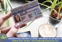 Đổi giấy phép lái xe Ô tô quốc tế