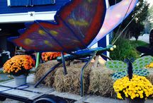 Community / Happenings in Coldwater, On