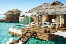 Someday / My tropical bucket list