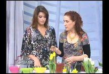 plantas tulipas