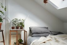 Attic houses ideas