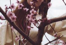 Inspiration: Cherry Blossom