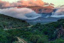 SA Road trips