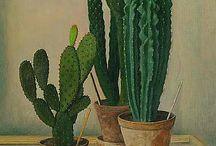 cactus / by Rachel In Veganland