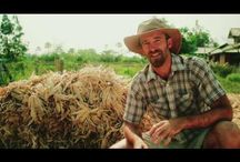 tropical permaculture