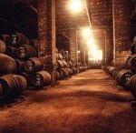 BODEGAS DE MONTILLA-MORILES / Las imágenes de nuestras bodegas reflejan el modo de hacer y de entender un mundo como el de los vinos generosos, y el vino dulce Pedro Ximénez