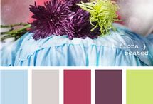 Color Palettes / by Kristy Lane