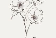Flowers drawnig